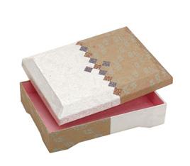 Carton HY-599