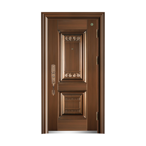 Steel wood security door