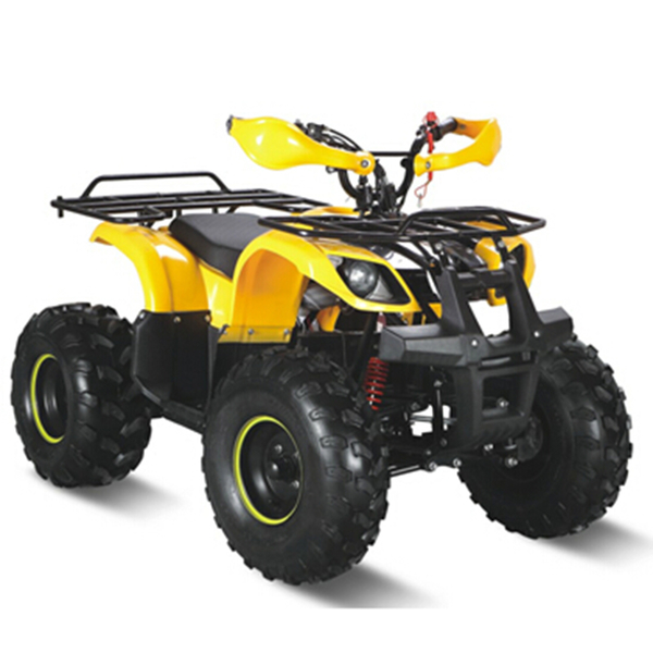750W electric atv quad with brushless motor