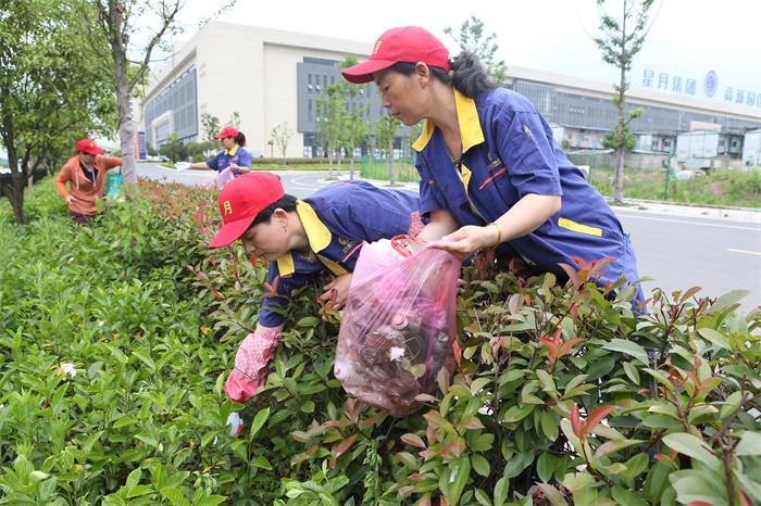 小红帽们相互配合清理厂区绿化带中的垃圾.jpg