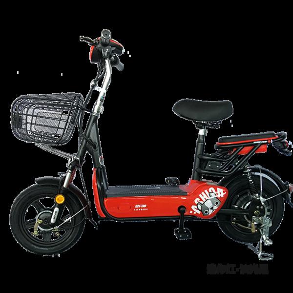 电动自行车 国标2号