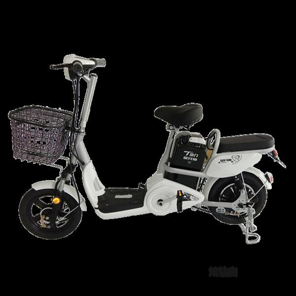 电动自行车 清丽