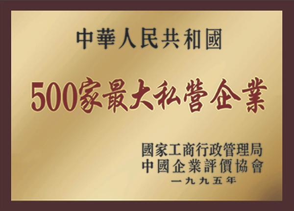 中國500家最大私營企業