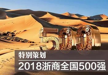 """热烈祝贺天喜控股集团入围""""2018浙商全国500强"""""""