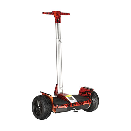 Electric Scooter W-Q5