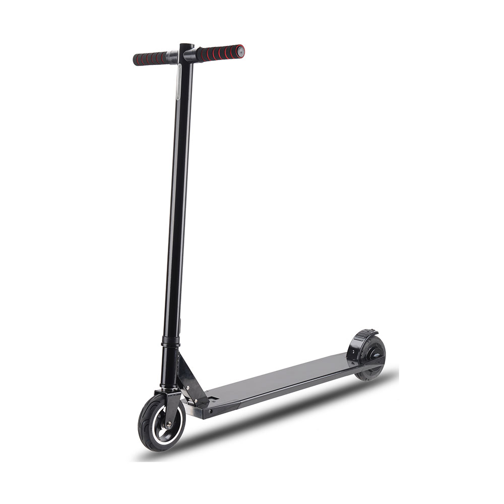 Electric Scooter ES-01(5.5inch)