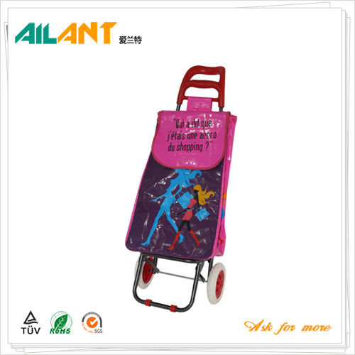 Normal style shopping trolley ELD-B201-27