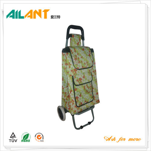 Normal style shopping trolley ELD-C301-30