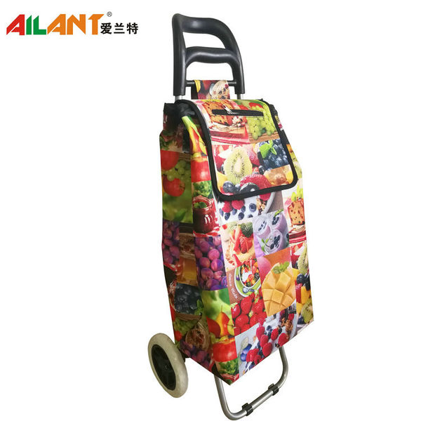 Normal style shopping trolley ELD-B201-6