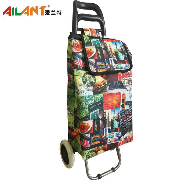 Normal style shopping trolley ELD-B201-5