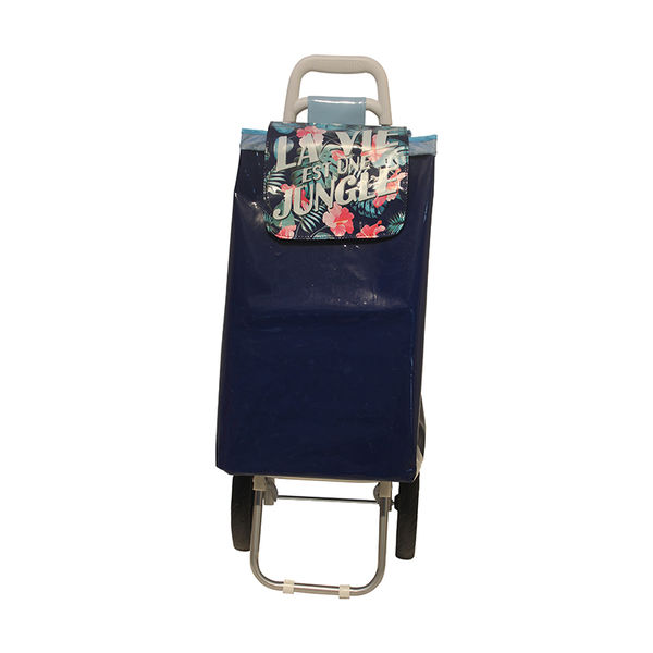 Normal style shopping trolley ELD-C401