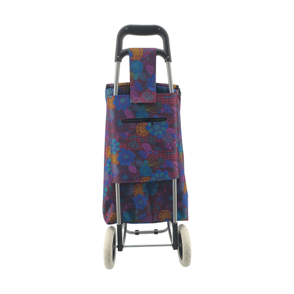 Normal style shopping trolley ELD-C301-2