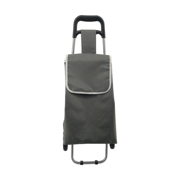 Climbing stairs shopping trolley ELD-D105
