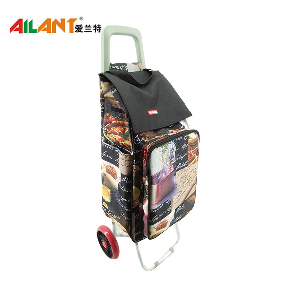 2019 Newest Shopping trolley ELD-C304-10