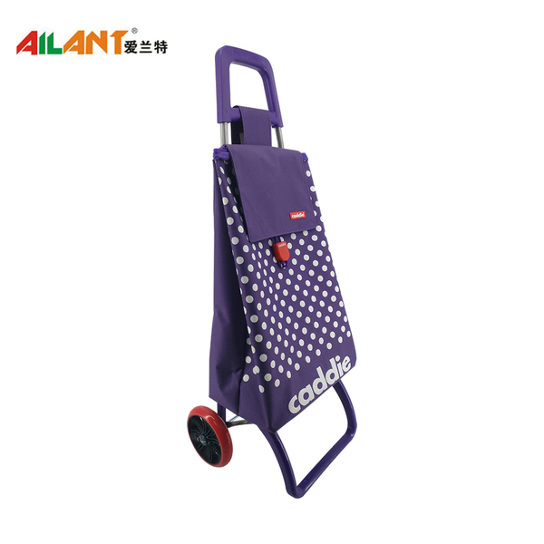 Normal style shopping trolley ELD-C304-5
