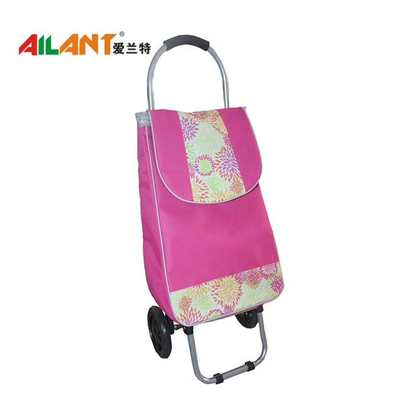 Promotional shopping trolley ELD-G104-1
