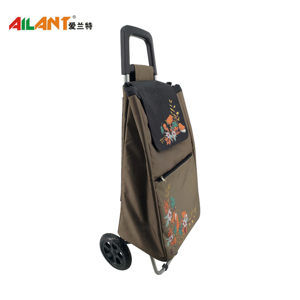Normal style shopping trolley ELD-C304-12