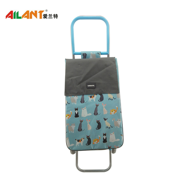 Normal style shopping trolley ELD-S401-5