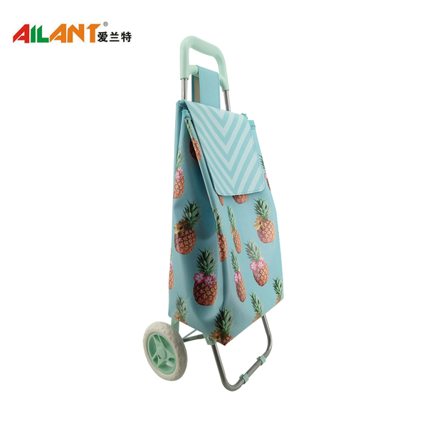 Normal style shopping trolley ELD-C402-5