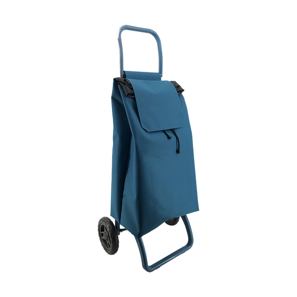 2019 Newest Shopping trolley ELD-S401-9