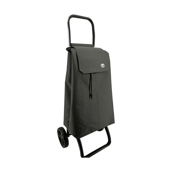 2019 Newest Shopping trolley ELD-S401-11