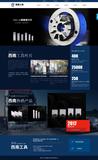 浙江西南工具有限公司 -C811