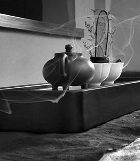 茶有七品-品风