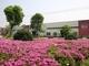 步阳工业园---亚洲最大的安全门生产基地落成-03