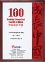 中国最具成长力民营企业100强