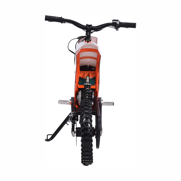 Electric Scooter Y01