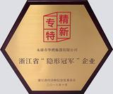 浙江省隱形冠軍企業