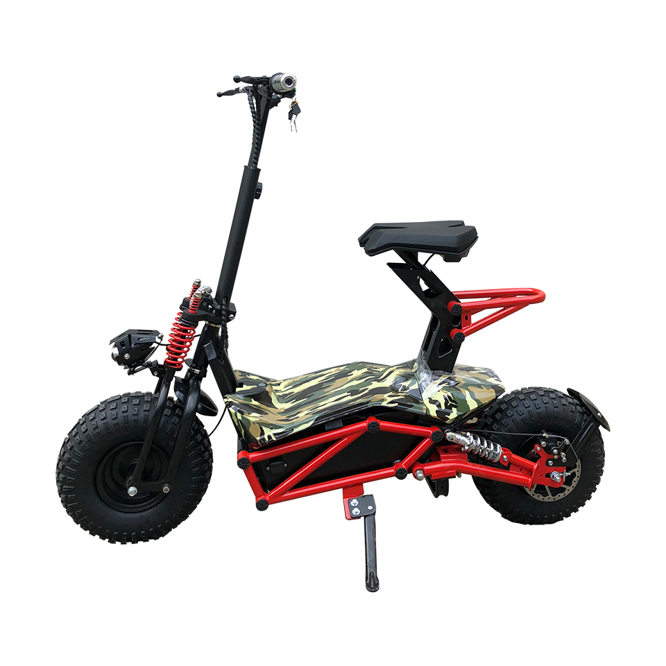 Electric scooter  HL-E005A