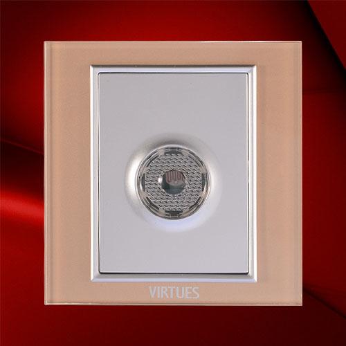 声光控带消防带节能开关-F07-SGX(4)