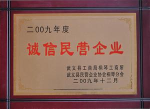 2009年度诚信民营企业