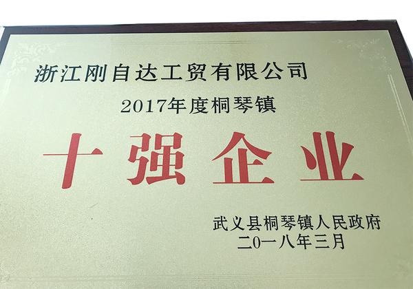 2017年度桐琴镇十强企业