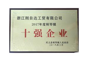2017年度桐琴镇区十强企业