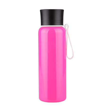 Stainless Steel Bottle / Classic S243