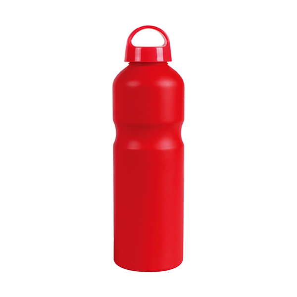 Aluminum Bottle / Sports A202