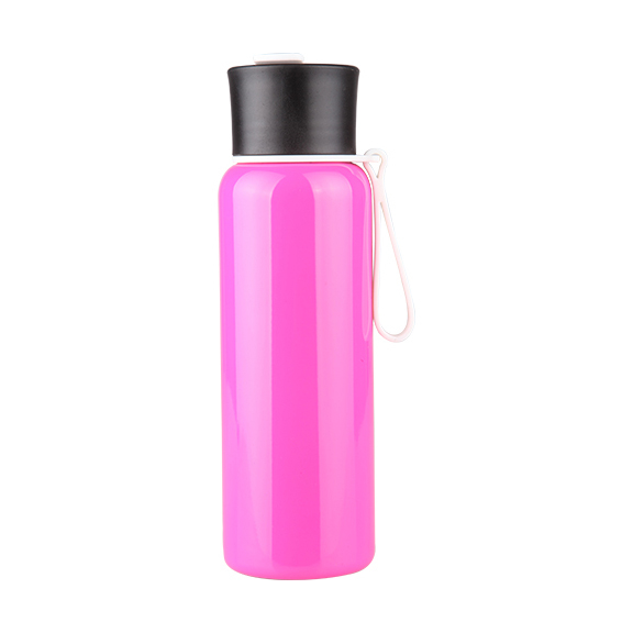 Stainless Steel Bottle / Classic S242