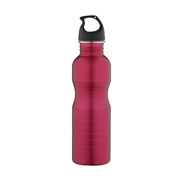 Stainless Steel Bottle / Classic S207