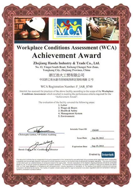 WCA/Workplace Conditions Assessment