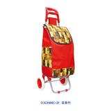 牛头柄便携购物车-XDN98C-2F 富贵竹
