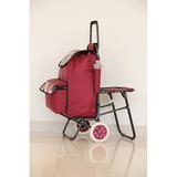 普通柄带椅购物车-XDZ02-2F 条纹