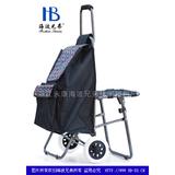 普通柄带椅购物车-XDZ02-2F 韩文字
