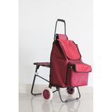 普通带椅爬楼购物车-XDZ02-3P 多彩生活