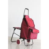 普通柄带椅购物车-XDZ0298-2F