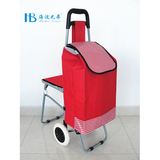 普通柄带椅购物车 -XDZ02-2F