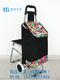 普通柄带座椅购物车-XDZ02-2F