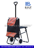 伸缩杆带座椅购物车 -XDZ04