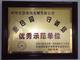 优秀示范单位-中国国际保护消费者权益促进会